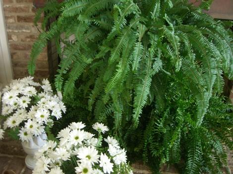 Mikas bridal shower 167