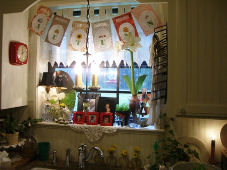 Kitchen window...