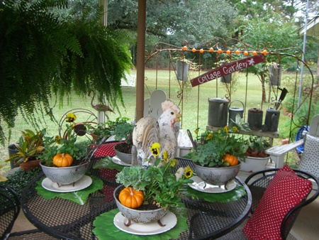Pumpkins, flowers, and a chicken...