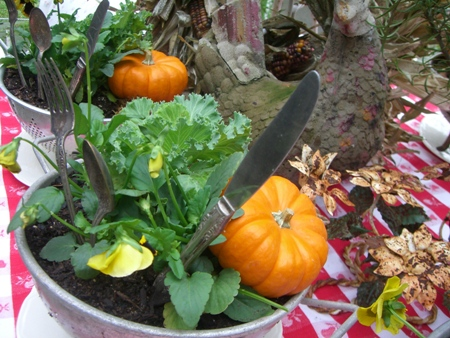 Flowers, pumpkins...