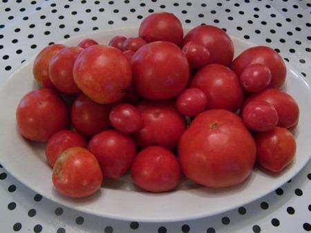 Fresh tomatoes...