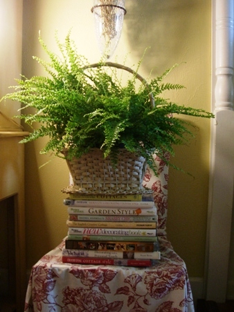 Fern and books...