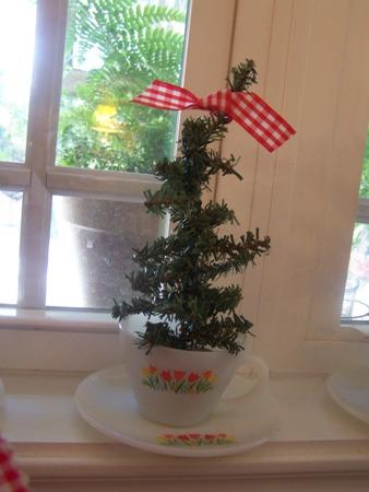 Little christmas tree...