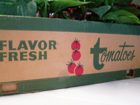 Tomatoe box..