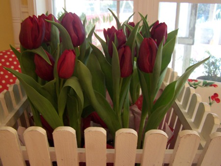 Valentine from Milton...