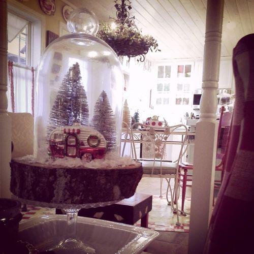 Christmas pics 034