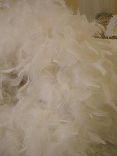 Beautiful_white_feathers_2